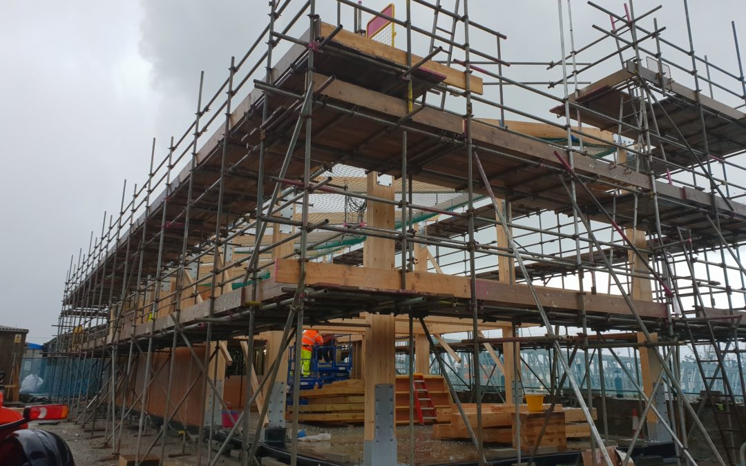 Glulam takes shape at Penlee